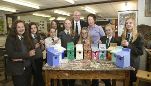 Photo of Medina College students decorate birdboxes for The Southern Co-operative stand at Riverfest